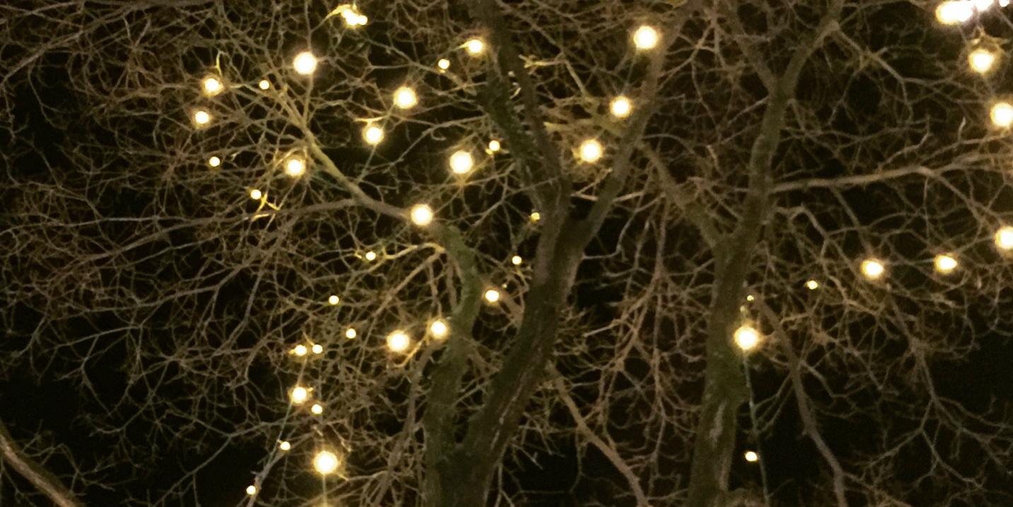 Weihnachtlicher Baum
