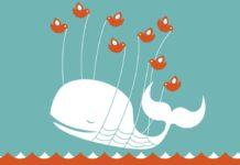 Illustration eines Wals, der von mehreren Vögeln aus dem Wasser gehoben wird.
