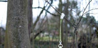 Ein Schnuller hängt an einem Band von einem Ast herab