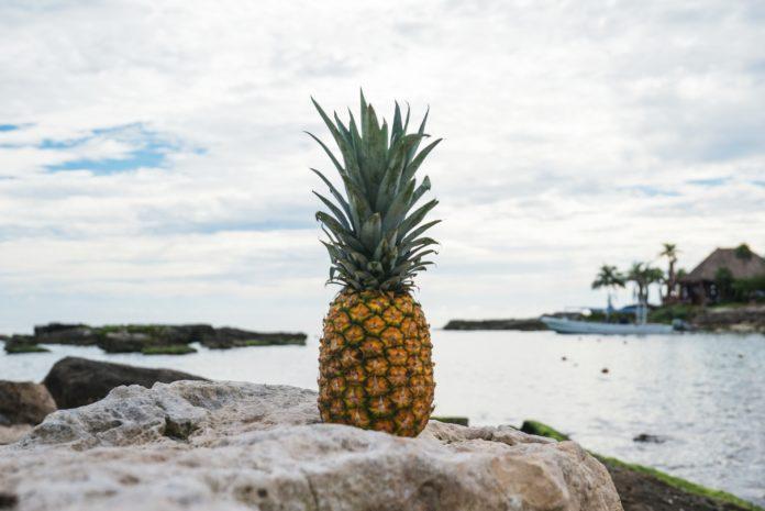 Eine Ananas auf einem Felsen, dahinter Wasser.