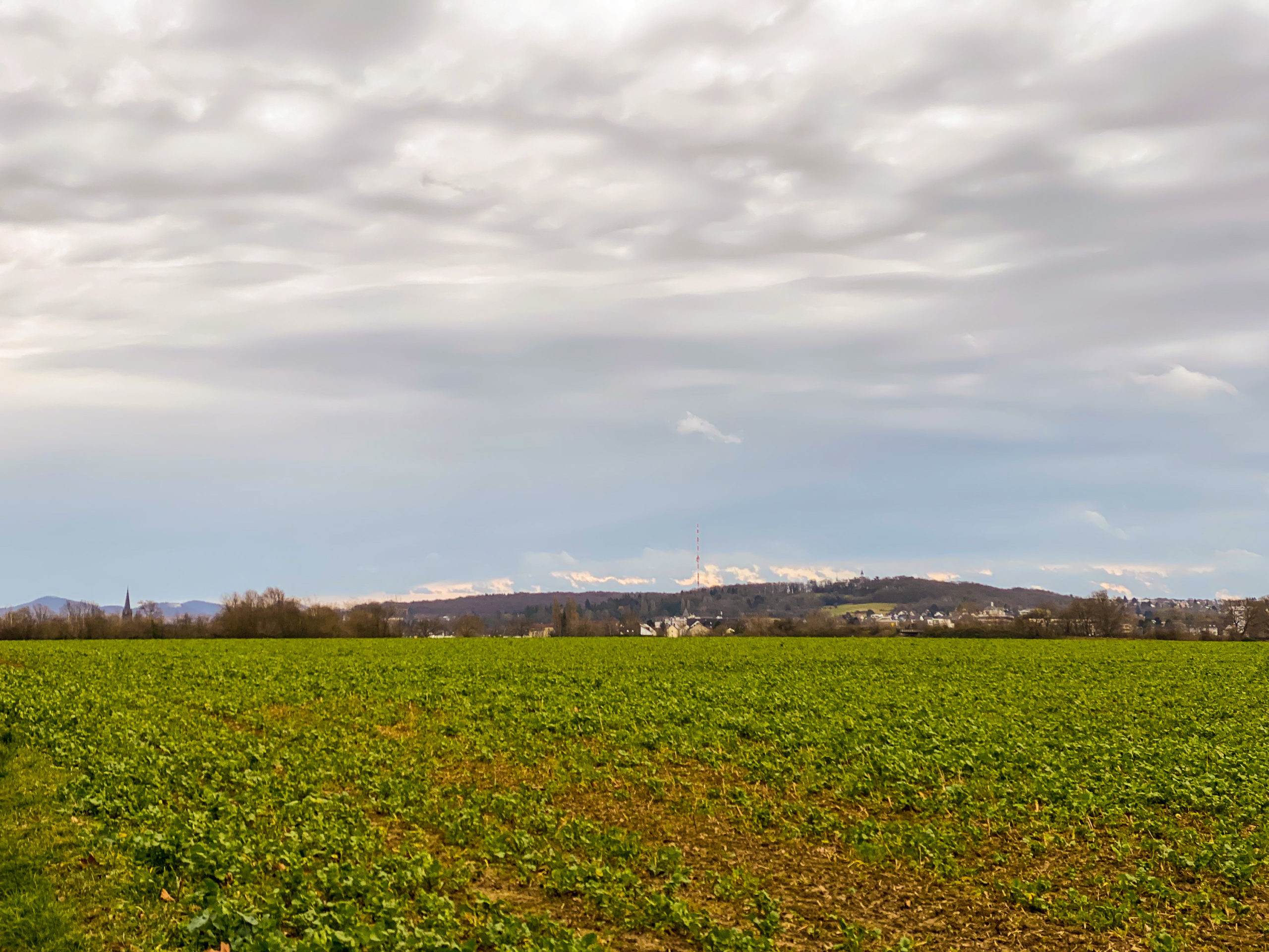 Braun-grünes Feld im Vordergrund, am Horizont Hügel, darüber ein grau-blauer Himmel mit vielen Wolken.