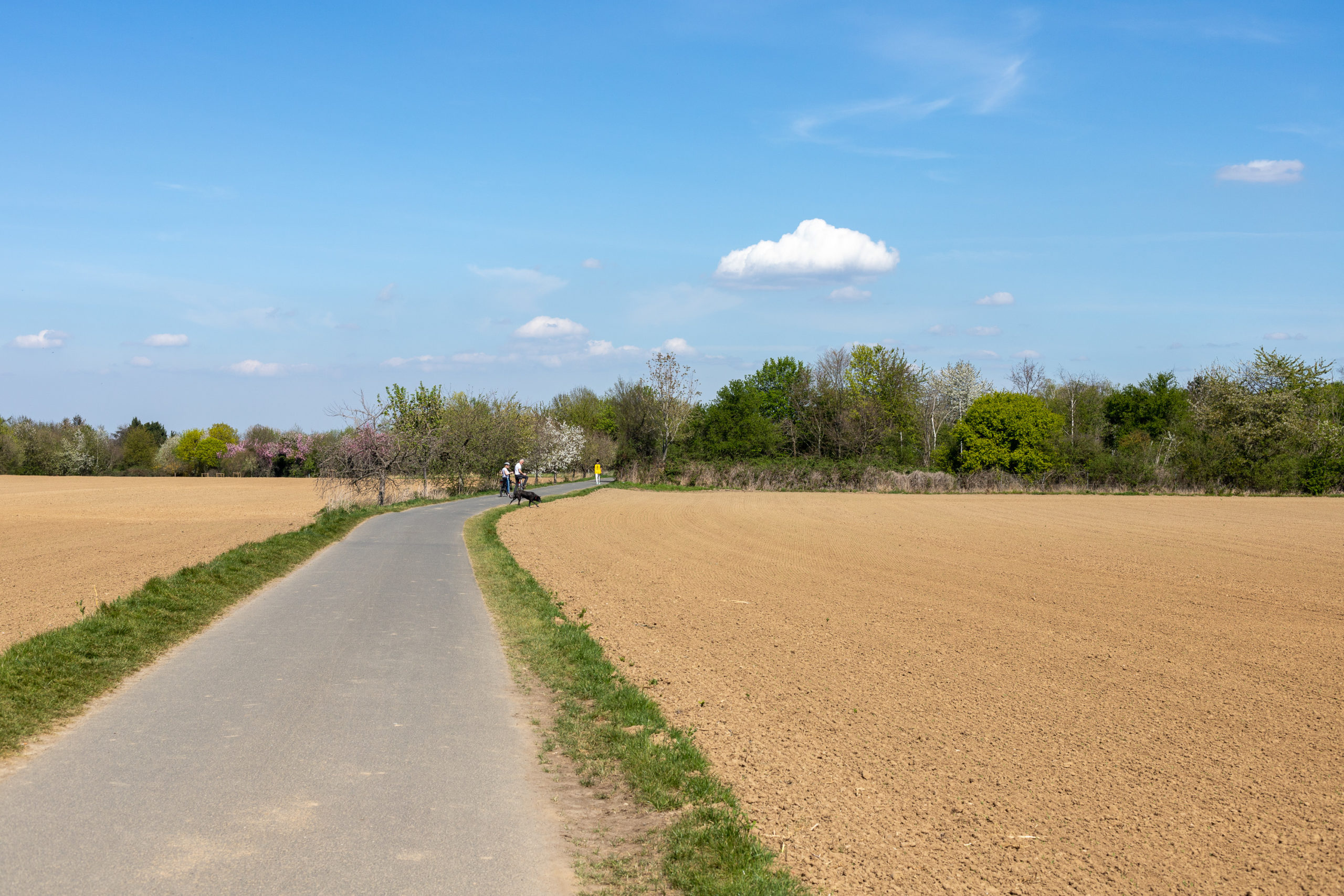 Ein geteerter Weg, links und rechts daneben umgepflügte und trockene Felder. Hinten erahnbar sind zwei Personen und ein Hund.