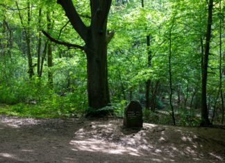 Etliche Bäume in einem satten hellen Grün, davor ein größerer Meilenstein mit Richtungs- und Entfernungsangaben.