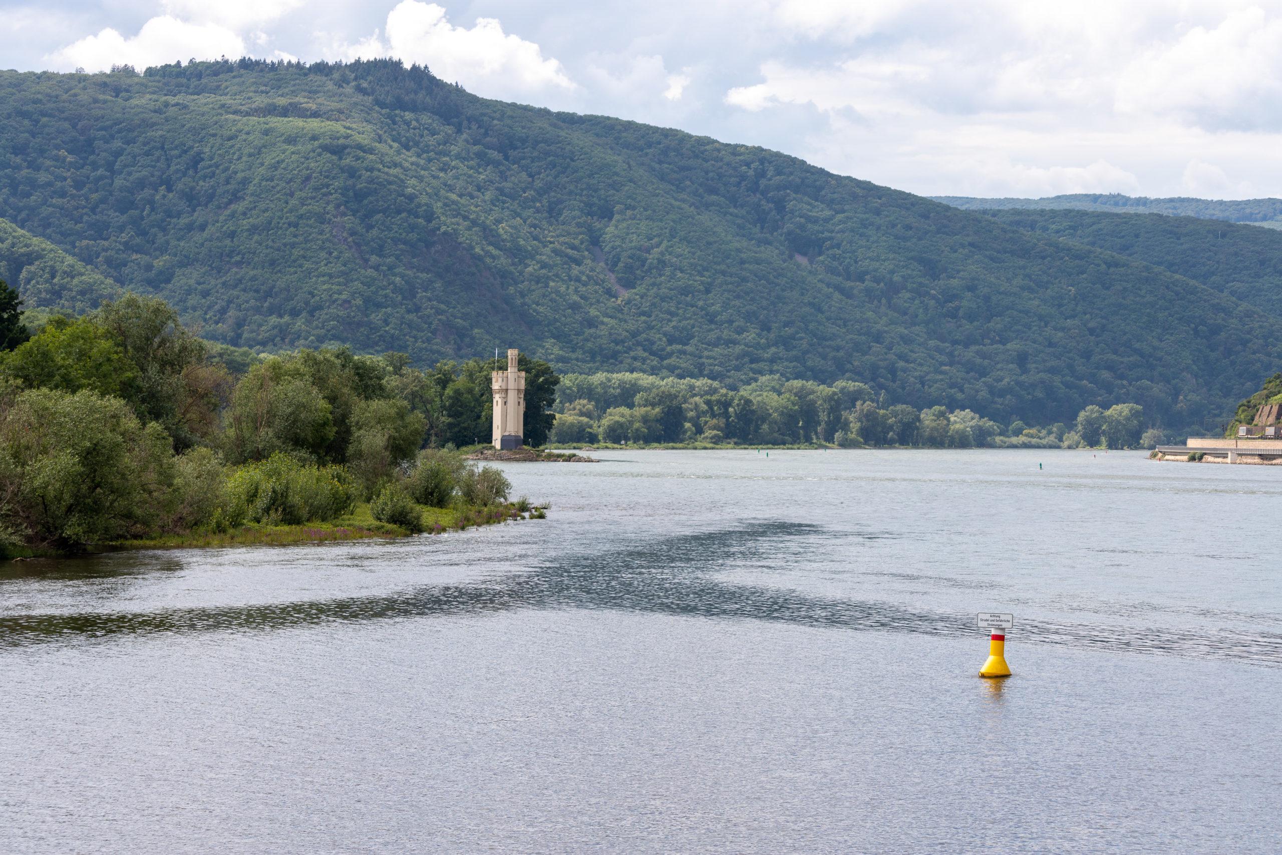 Viel Wasser, im Hintergrund ein Turm auf einer Rheininsel, im Vordergrund noch eine kleine Boje.