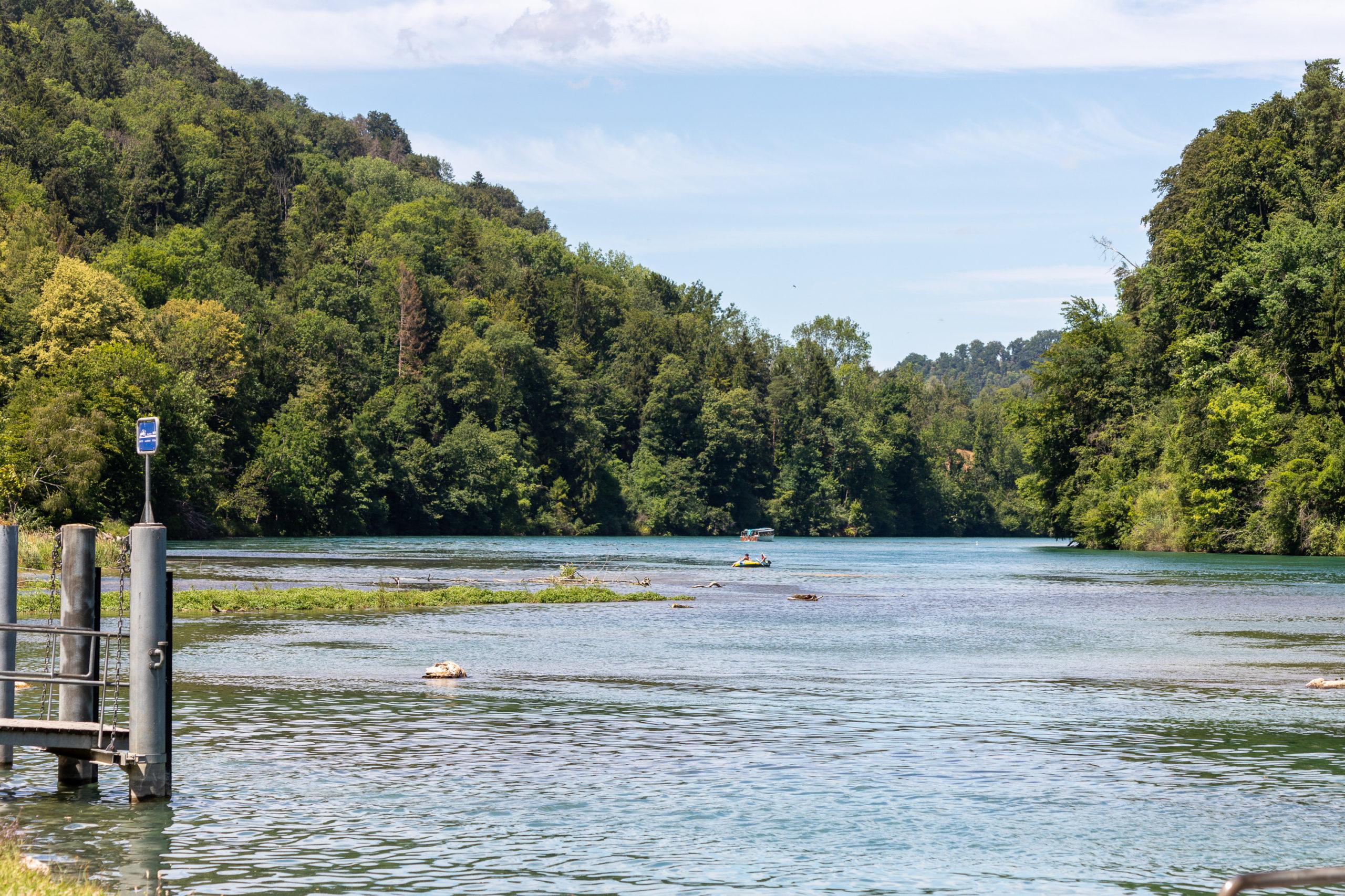 Der Rhein auf fast Wasserhöhe. Am Ufer viel Wald, links ragt das Ende eines Bootsstegs ins Wasser. Man erkennt ganz klein im Hintergrund zwei Boote im Wasser.