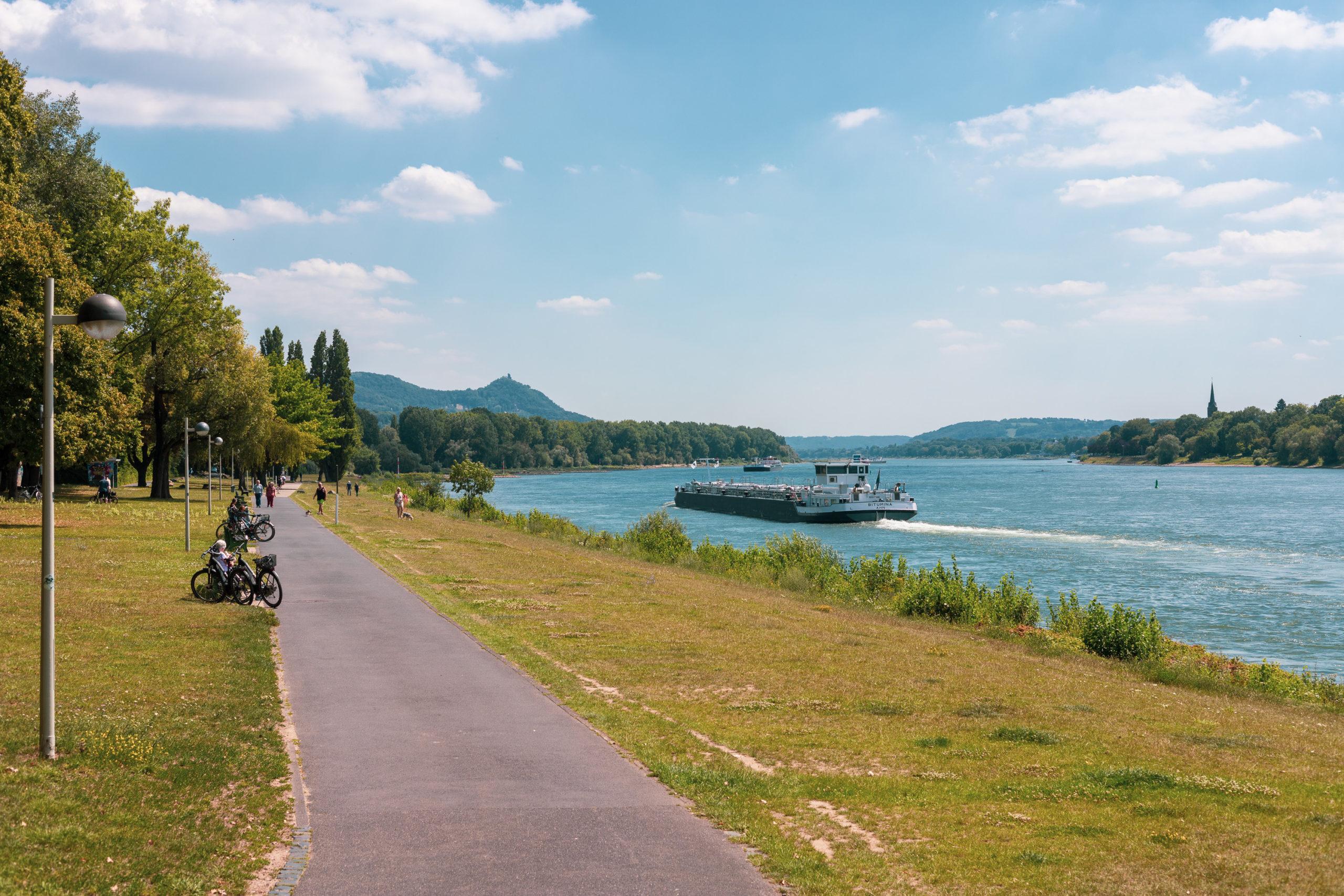 Der Rhein mit Frachtschiff auf der rechten Bildseite, links ein Grünstreifen, dahinter ein geteerter Weg, an dessen Rand stehen mehrere Bänke, darauf Leute, davor Fahrräder.