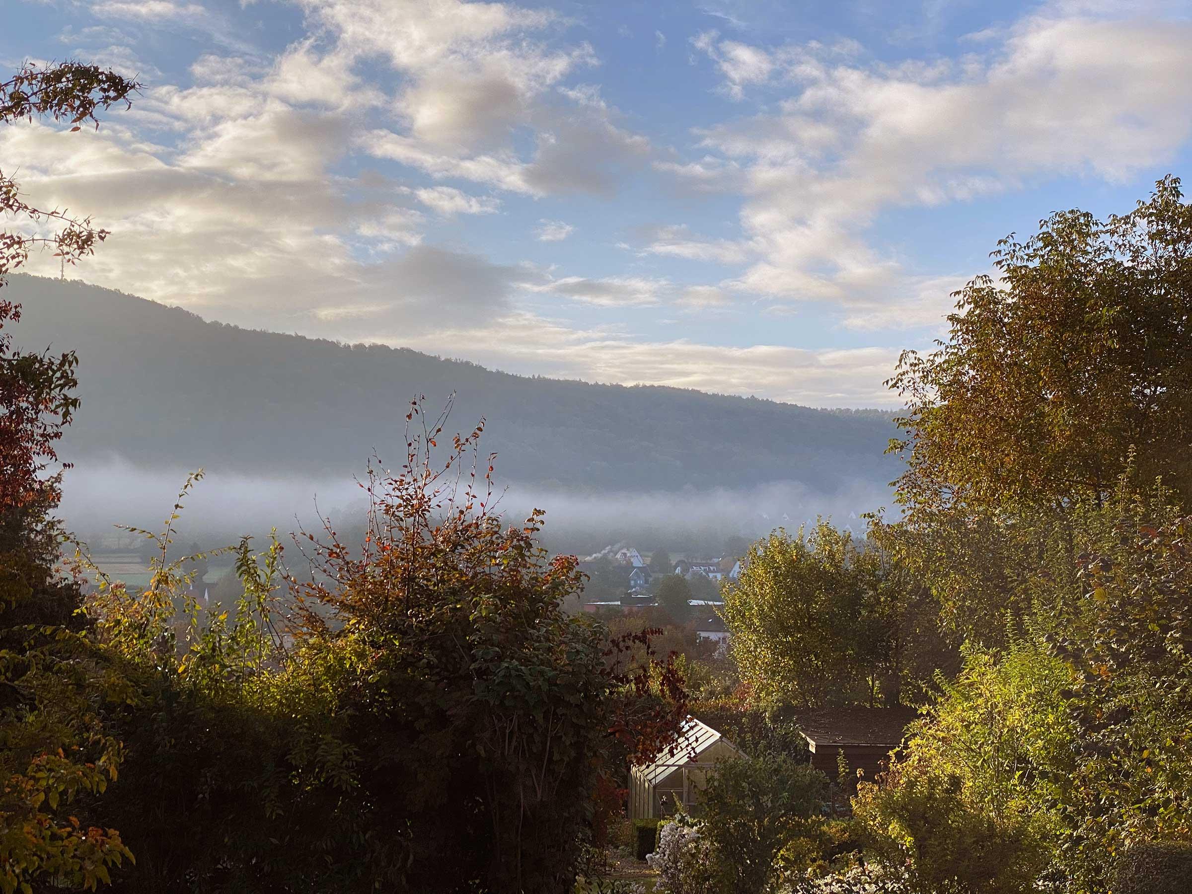 Im Vordergrund Bäume, im Hintergrund ein bewaldeter kleiner Berg. Im Tal hängt ein Band Nebel.