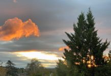 Eine durch die untergehende Sonne rot leuchtende Wolke vor einem Hitnergrund dunkler Wolken. Als Schattenriss zeichnen sich zwei Tannen im Vordergrund ab.
