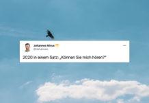 """Vogel im Himmel mit einem Screenshot des Tweets von Johannes: """"2020 in einem Satz: 'Können Sie mich hören?'"""""""