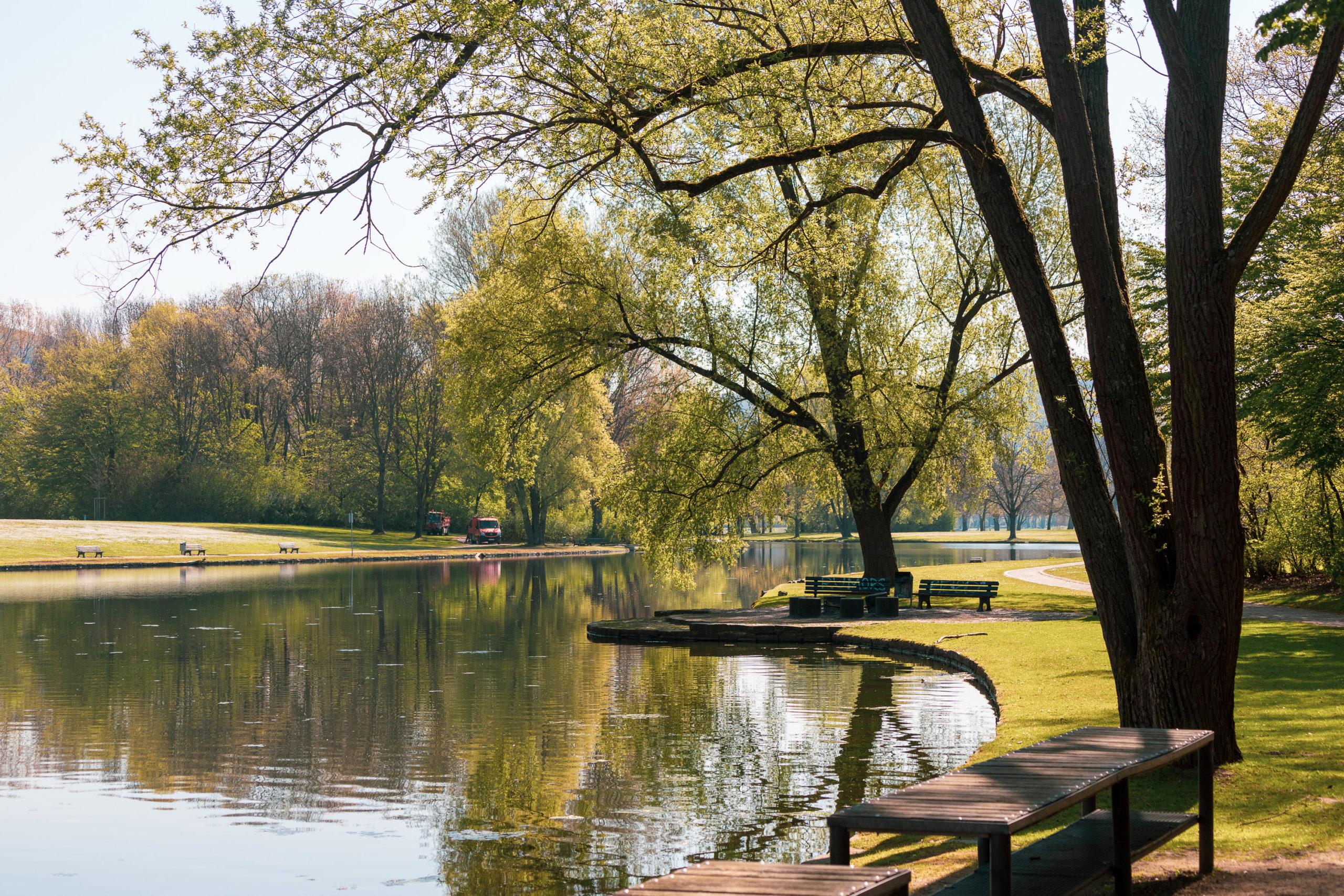 Ein kleiner See, umringt von Rasen und Bäumen, die sich im See spiegeln.