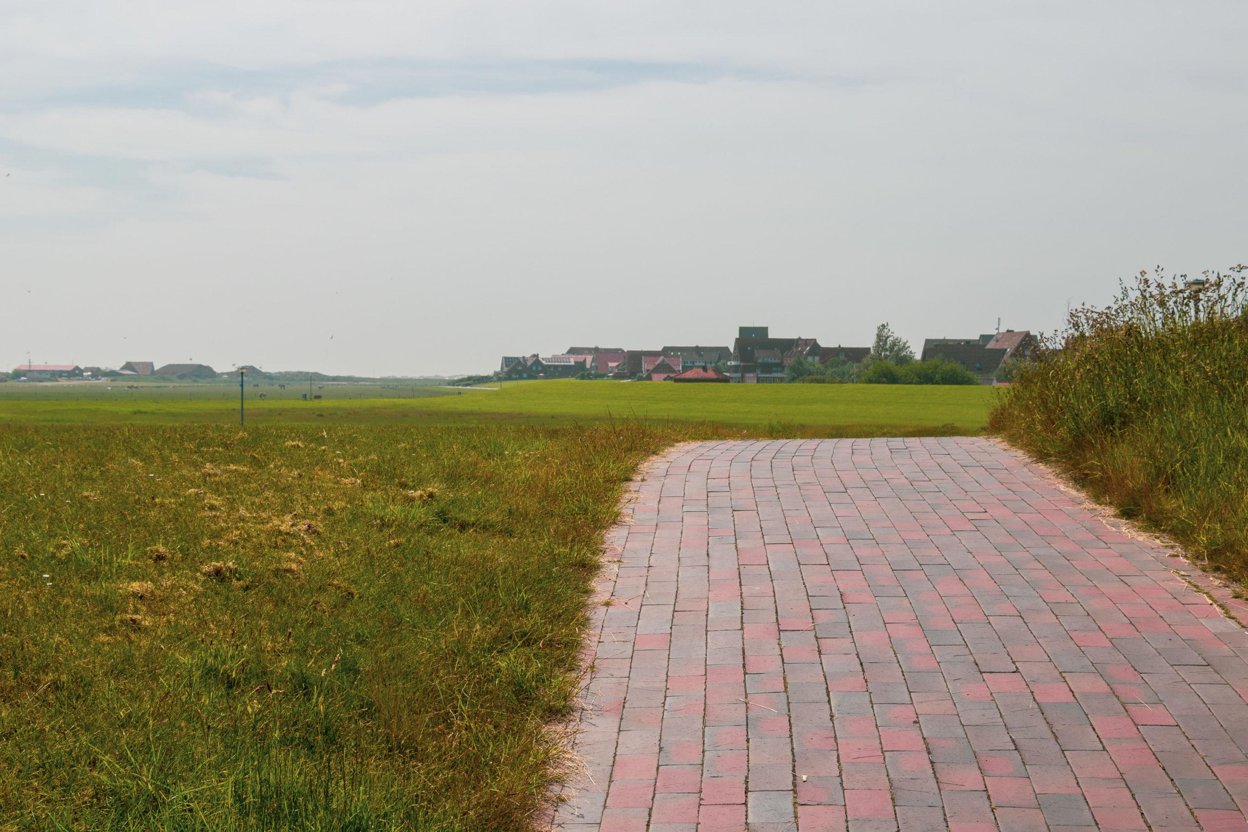 Ein mit roten Steinen gepflasteter Weg, links eine Wiese, rechts höheres Gras. Im Hintergrund ist ein Dorf zu erkennen.